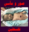 فلاشات قضايا اسلاميه Palestine_Pic.jpg